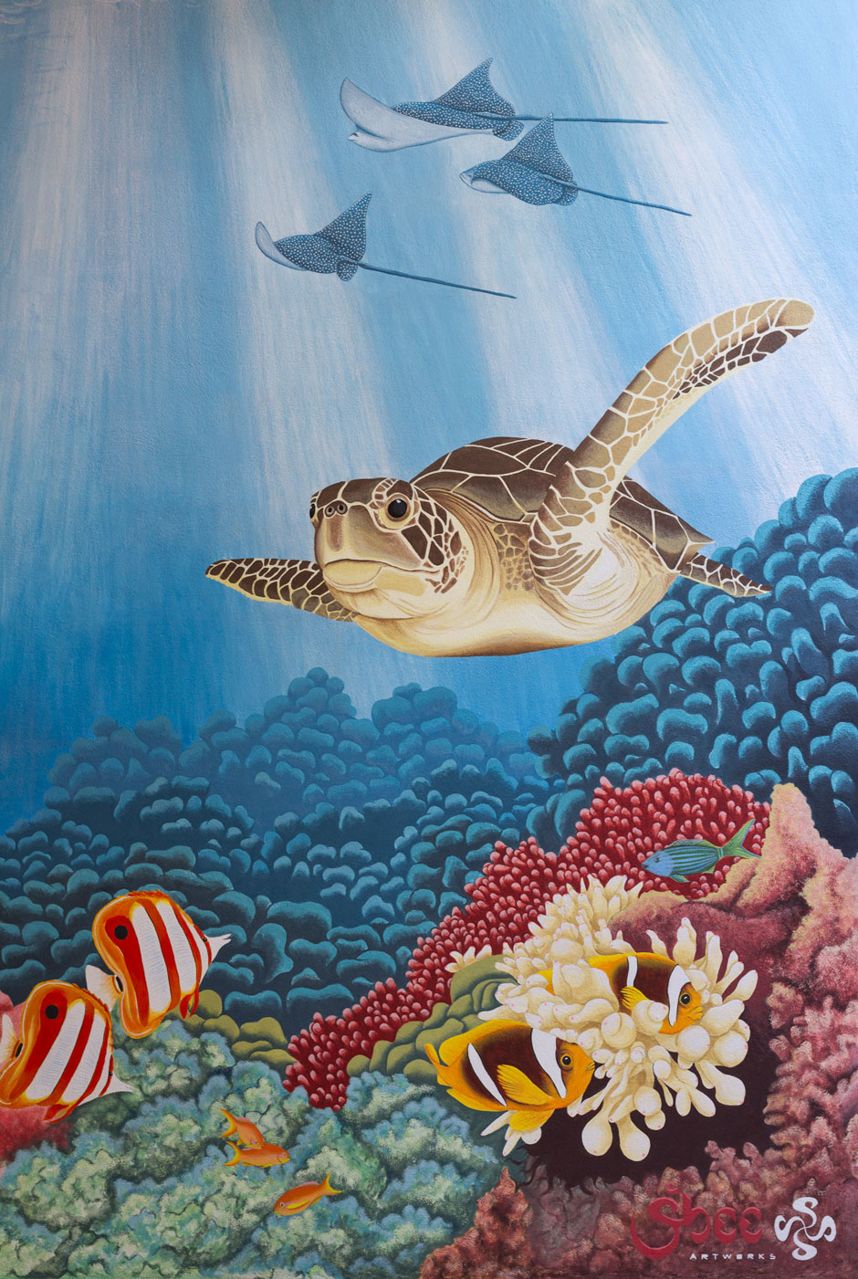_mg_8197_turtle_clown_fish