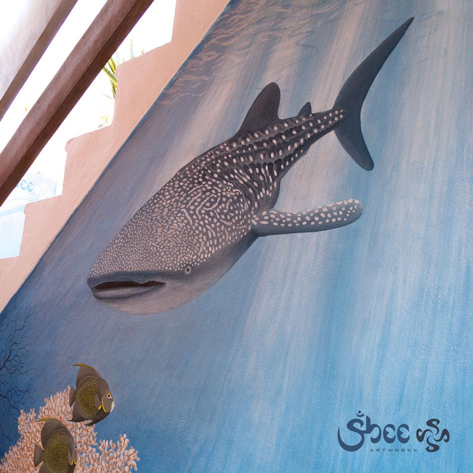 _mg_8323_whale_shark_02