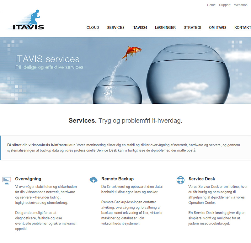 Itavis Storage Solutions - Web Design